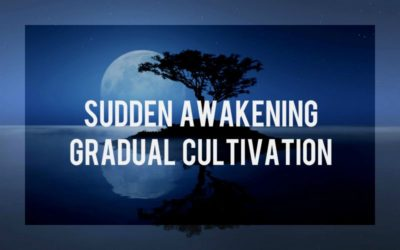 Sudden Awakening, Gradual Cultivation
