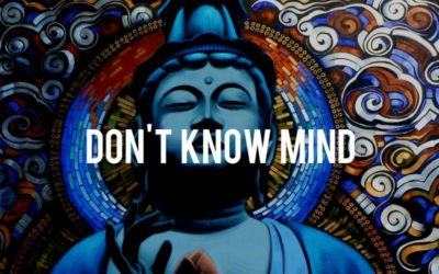 Don't Know Mind
