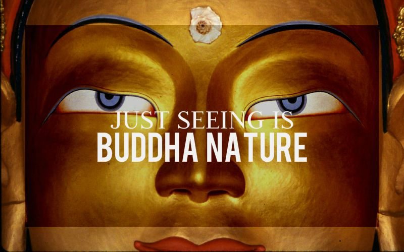 Just Seeing is Buddha Nature