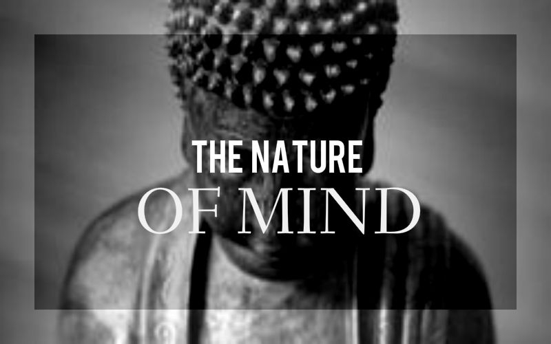 The Mind and the Nature of Mind