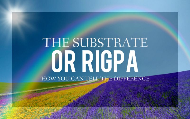 The Substrate or Rigpa? How You Can Tell the Difference